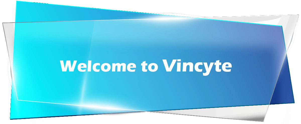 Welcome to Vincyte. Please enter login details to access the dashboard